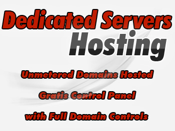 Inexpensive dedicated server hosting services